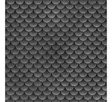Gray Scales Photographic Print
