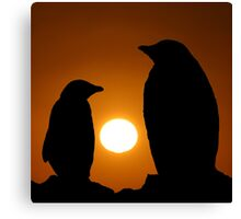 Penguins at sunset Canvas Print