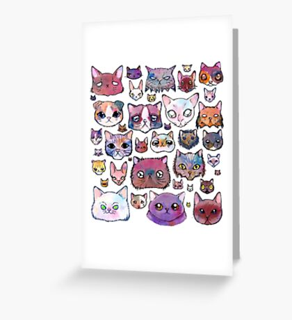 Feline Faces Greeting Card