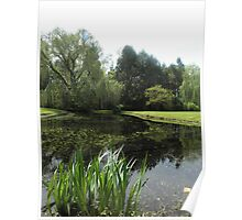 Garden Pond at Berkeley Plantation Poster