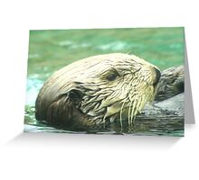 Sea Otter Portrait Greeting Card