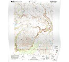 USGS Topo Map Oregon Sage Hen Butte 281354 2004 24000 Poster