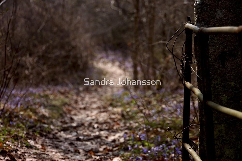 The Gatekeeper by Sandra Johansson
