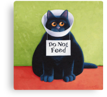 Do Not Feed Canvas Print