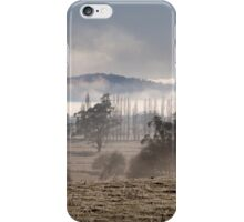 ~ The Valley ~ iPhone Case/Skin