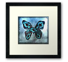 Aqua Blue Butterfly Framed Print