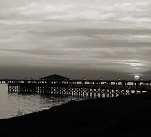 sunset point in black and white by leapdaybride
