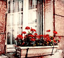 Windows of Paris by Rene Hales