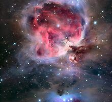 The Orion Nebula by StocktrekImages