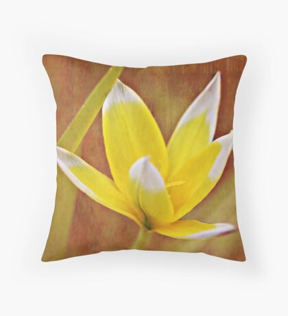 BiColor Throw Pillow
