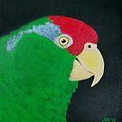 Green Cheeked Amazon Parrot by Joann Barrack