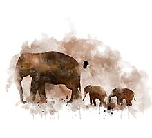 Elephant and Baby Photographic Print