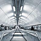 Terminal 6 by Carlos Neto