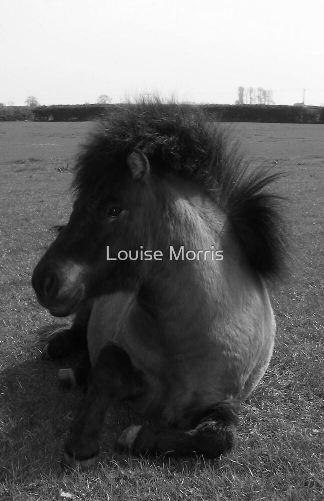Mona-Lottie by Louise Morris