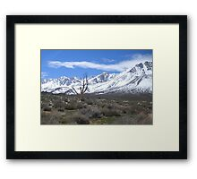 Stark Reality of Mother Nature Framed Print
