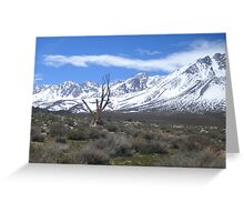 Stark Reality of Mother Nature Greeting Card