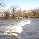 Rapids in the Rideau River, Ottawa, Canada by Shulie1