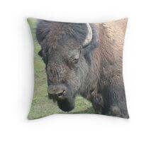 Chief Tatonka Throw Pillow