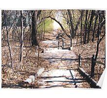 Steps Leading down to Strathcona Park, Ottawa Poster