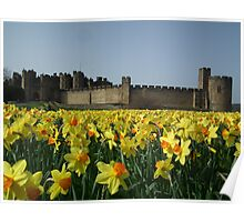 Alnwick Castle (aka Hogwarts from Harry Potter) Poster