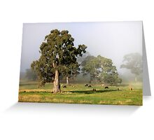 ~ Morning in the Hills ~ Greeting Card