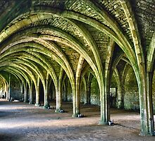 Fountains Abbey Cellarium by David Davies