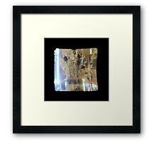 TTV Image ( Through The Viewfinder)#3 Framed Print