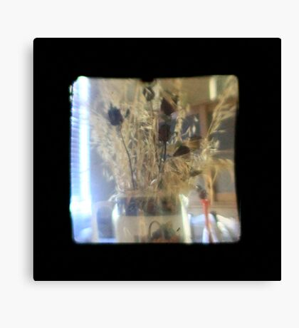 TTV Image ( Through The Viewfinder)#3 Canvas Print