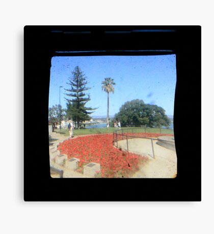 TTV Image ( Through The Viewfinder)#5 Canvas Print