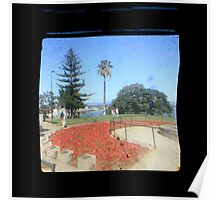 TTV Image ( Through The Viewfinder)#5 Poster