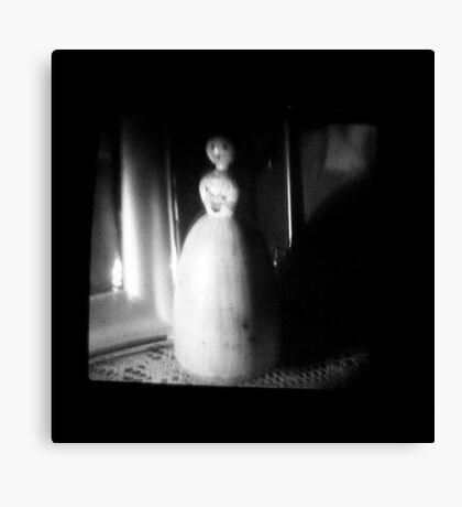 TTV Image ( Through The Viewfinder)#11 Canvas Print