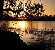 Sunset on the Georgina River, Qld Australia by Carmel Williams