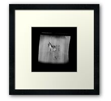 TTV Image ( Through The Viewfinder)#14 Framed Print