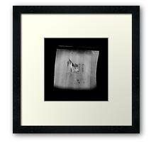 TTV Image ( Through The Viewfinder)#14 Framed Print