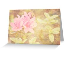 Pink Azaleas Dreamy Greeting Card Greeting Card