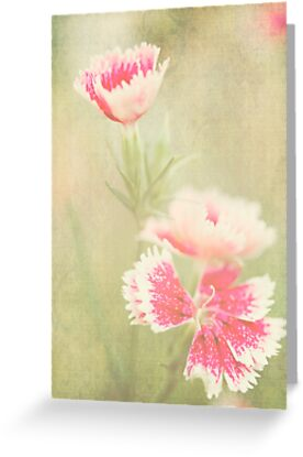 Pink Floral Greeting Card by Susan Gottberg