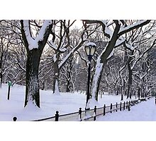 Snowy Central Park  Photographic Print