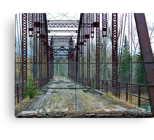 Nature's Little Miracle Canvas Print