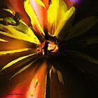 Flower Power by Stevn Dutton