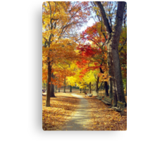 Autumn foliage in Central Park  Canvas Print