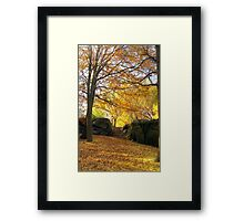 Fall on Stone Stairwell  Framed Print