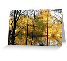 Autumn silhouette Colours Greeting Card
