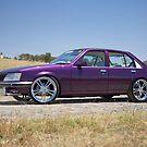 Purple Holden VH Commodore by John Jovic
