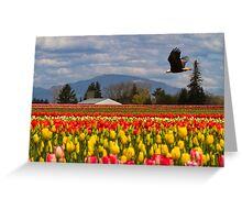 Bald Eagle crossing a Tulip Field Greeting Card