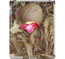 Cannon Ball tree iPad Case/Skin