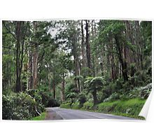 On the road to Monbulk Poster