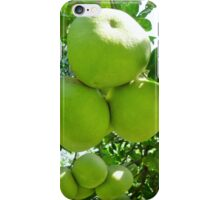pomelo fruit tree iPhone Case/Skin