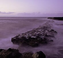 Purple Night at Submarine Rock  by Kyle  Rodgers