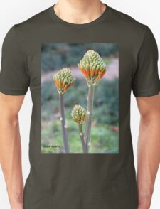 Aloes are blooming T-Shirt