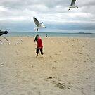 Chasing Seagulls by wyvernsrose